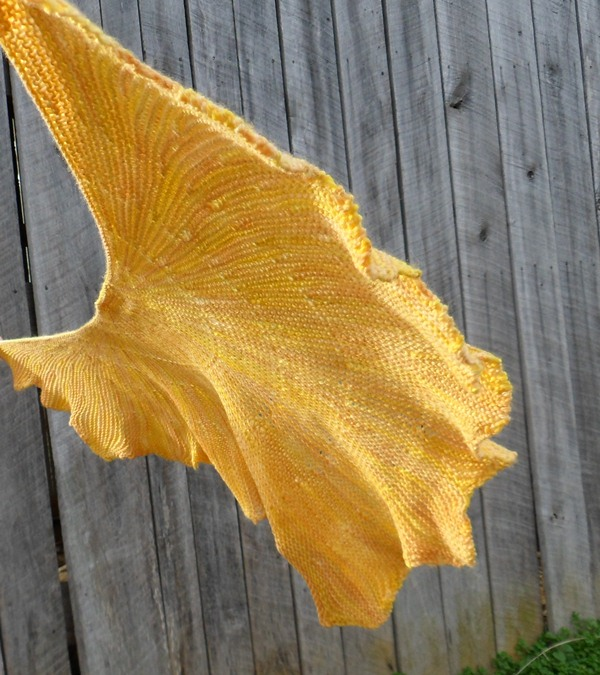 Ginkgo Leaf Knitting Pattern : 302 Found